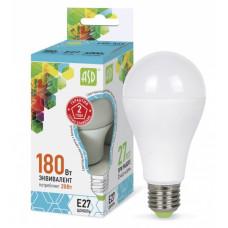 Лампа диодная A60 20Вт Е27 4000К 1800Лм ASD (10)
