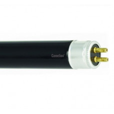 Лампа ультрафиолетовая люминесцентная G5 T5 6Вт 226мм Camelion (10)