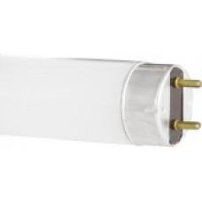 Лампа люминесцентная G13 T8 18Вт 54-865 600мм Camelion (25)
