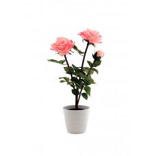 Светильник интерьерный Старт LED Роза розовый 2*R6 (10)