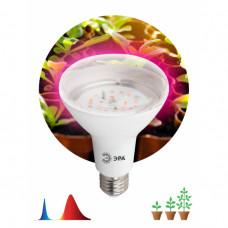 Лампа фито Е27 16Вт 1310К для рассады Эра красно-синий спектр (20)