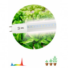 Лампа фито G13 T8 18Вт 1200мм для фотосинтеза Эра (25)