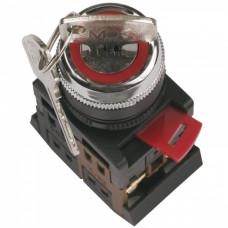 Переключатель IEK AKS-22 I-O 1з+1р ключ (10)