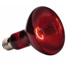 Лампа накаливания ИКЗК 250Вт Е27 инфракрасная для животных (15)