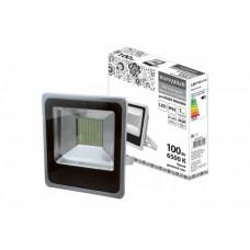 Прожектор диодный 100Вт 6500К 8000Лм IP65 TDM СДО100-2-Н (5)