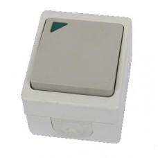 Bыключатель Вуокса 1кл. подсветка IP54 TDM (10)