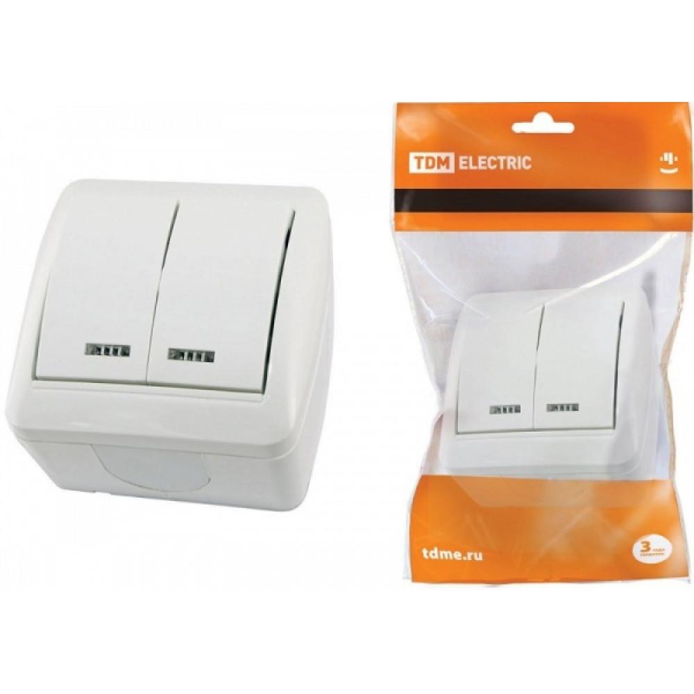 Bыкл. Селигер 2кл. подсветка IP44 TDM (10)