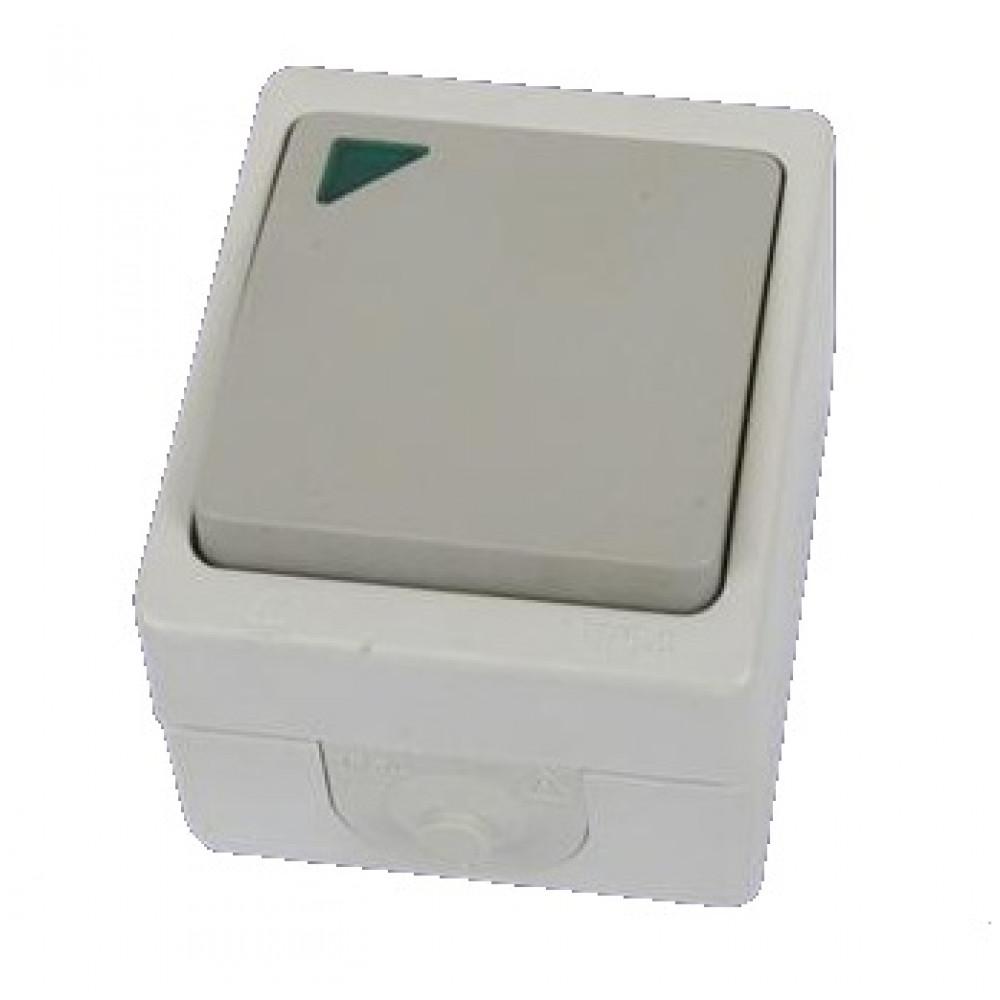 Bыкл. Вуокса 1кл. проходной с подсветкой IP54 TDM (10)